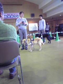 盲導犬まつり